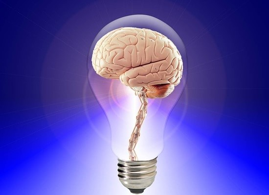 brain-20424_640-min