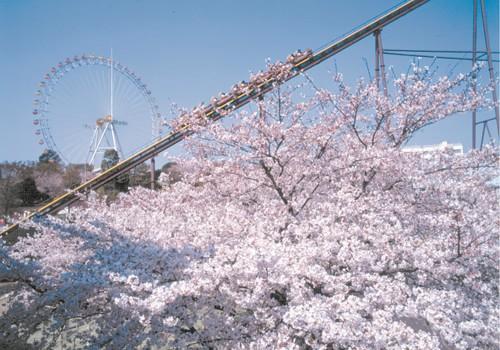 yomiuri_land-big