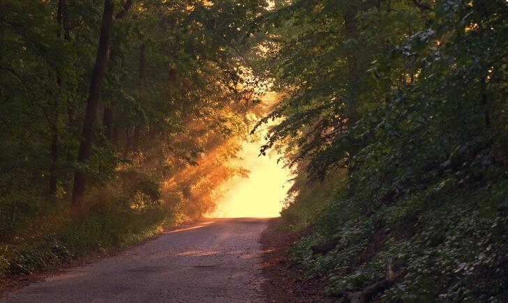 sunlight-166733_1920