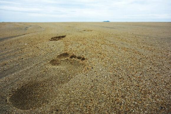 footsteps-732128_1280 (1)