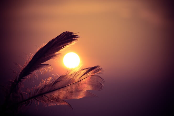 sunset-feathers_20151230 2