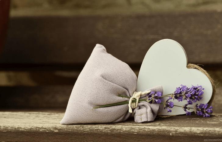 momone_lavender-823600_1920