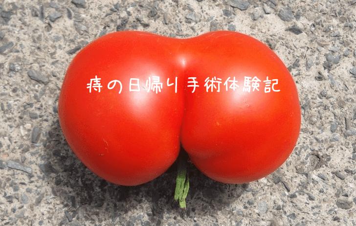 jinohigaeri_20160512
