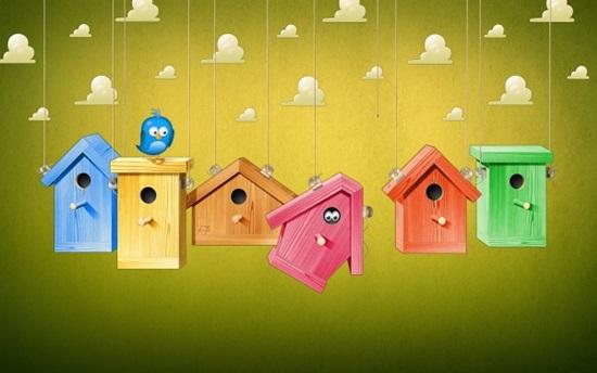 Birds-Houses-600x375