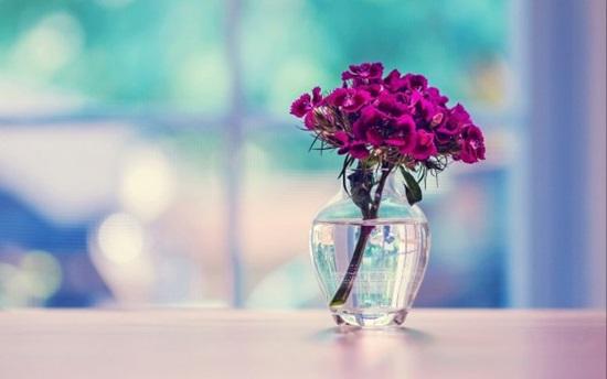 Purple-Flowers-in-Glass-Vase-600x375