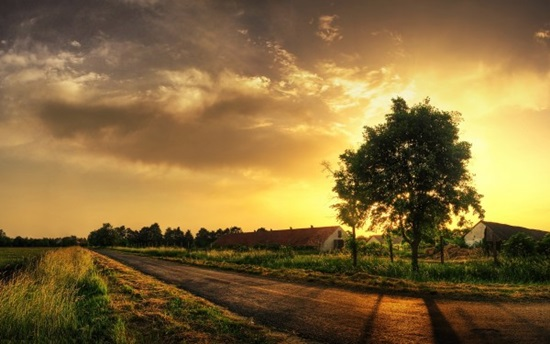 Road-to-the-Farm-at-Sunset-600x375