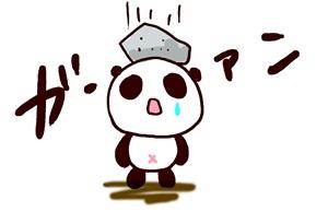 panda_141122